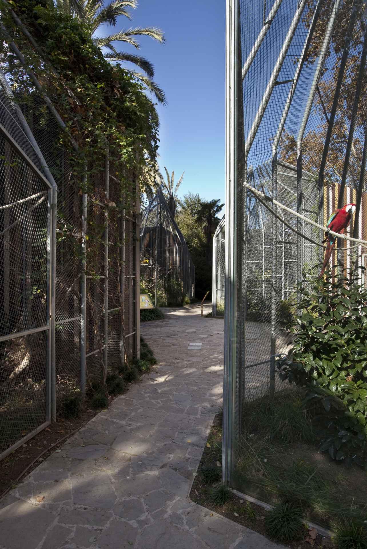 barcelona-architecture-zoo